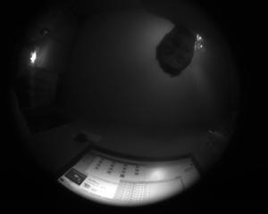 AllSky: QHY5+2.1мм с тёмным куполом