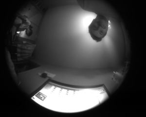 AllSky: QHY5+2.1мм без тёмного купола