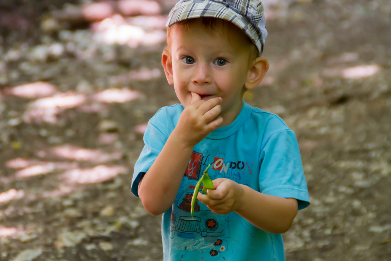 Макс (2 года) на горохе поднимается на гору от Шапсуги